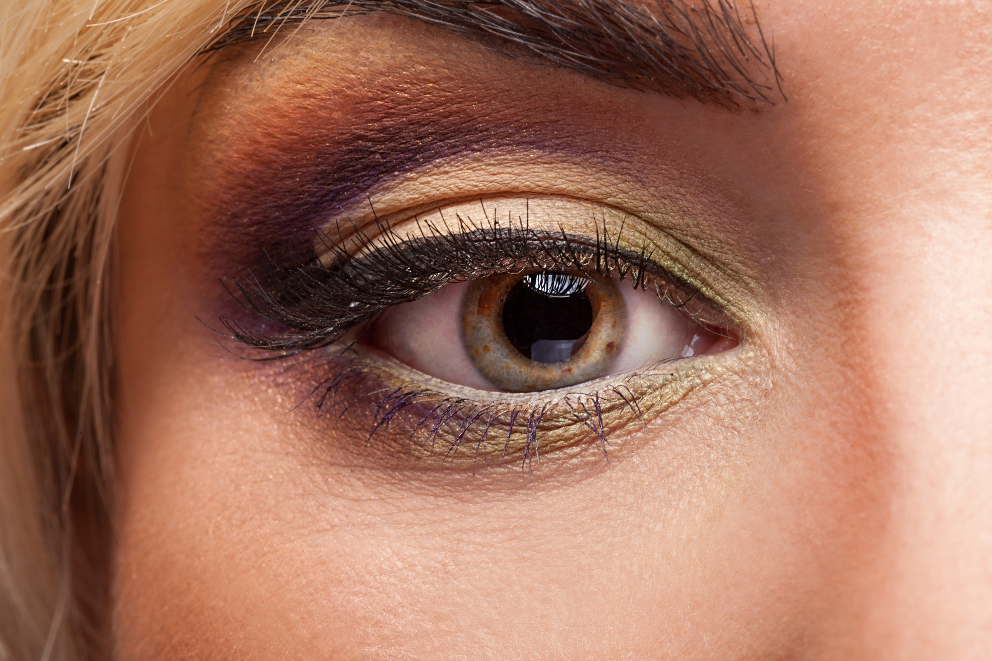 Eye with professional makeup in close up image